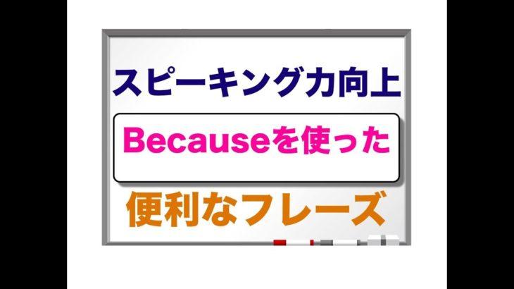 Because を使った⭐️誰でもすぐに英語フレーズが簡単に作れる⭐️ スピーキング力向上 便利なフレーズ