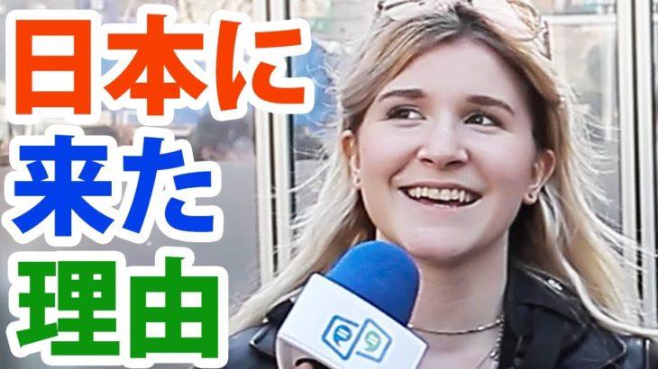 「日本に来て◯◯してみたい!」|訪日外国人インタビュー(渋谷)|IU-Connect英会話 #150