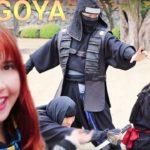 HISTORICAL NAGOYA! Nagoya Castle, Tokugawa Ieyasu and Hattori Hanzo's Ninja! 徳川家康と服部半蔵忍者隊を見に名古屋へ!
