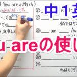 【英語】中1-2 You areの使い方