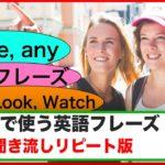 会話で使う英語フレーズ (聞き流しリピート練習#3)【SomeとAny,  親切フレーズ、See, Look,Watchを使ったフレーズ等】