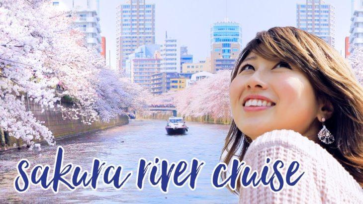 お花見クルーズで季節の英会話♪ Cherry Blossom Cruise🌸〔#685〕