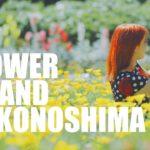 How To Visit Nokonoshima | 花の島、能古島での過ごし方!