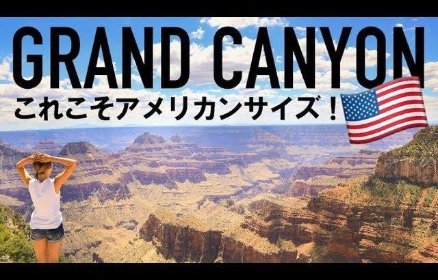アメリカで大人気の観光スポット☆ グランド・キャニオンで過ごす朝!〔#657〕【🇺🇸横断の旅 58】