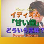 パワー イディオム 英語 慣用句 Power Idioms 17