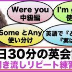 (Were you、SomeとAny 使い分け方、I'm gonnaフレーズ、英語で『そういえば』『今のところ』、OFの使い方等)1日30分の英会話【聞き流しリピート練習】シリーズ008