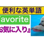 便利な英単語『Favorite(お気に入り)』を使った質問と応え方 分かりやすい動画レッスン