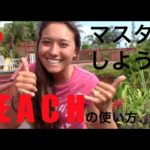 ハッピー英会話レッスン122(EACHの使い方)with  英会話リンゲージ