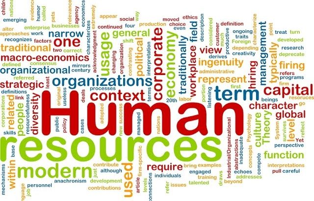 English for Human Resources VV 43 – HR Management (1) | Business English Vocabulary