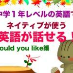 中学1年レベルでネイティブが使う英語が話せる!Would you like編