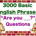 """""""Are you ____?"""" 3000 Basic English Phrases"""