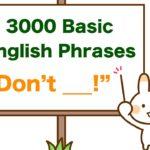 """Don't _____!!"" 3000 Basic English Phrases"