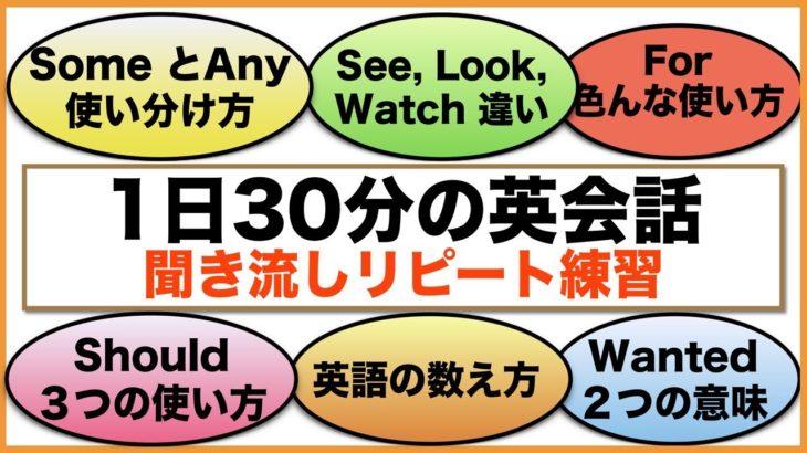 (SomeとAny 違い、See, look, Watch 違い、For 色んな使い方、英語の数え方など)1日30分の英会話【聞き流しリピート練習】 シリーズ002