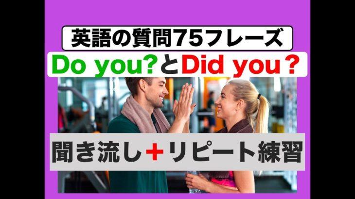 Do you?とDid you?を使った英語75フレーズ 聞き流しリピート版