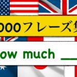 1000フレーズ集 How much?「いくら___?、どれ位の量の___?」を使ったフレーズが簡単に身に付くレッスン