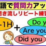 【英語で質問力アップ】5W&1Hと組み合わせるDo you,Did you,Are youを使ったフレーズ(聞き流しリピート練習)