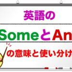英語の『Some』 と『Any』 の意味と使い分け方 <意味を理解したら例文を使って学習ができる授業>(初心者から中級レベルの英語学習 動画レッスン)