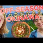 Okinawa! Tatsu and Micaela's Off-Season Vlog – オフシーズンの沖縄の旅!