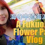 Incredible Blue Fields in Fukuoka  – 海の中道海浜公園のネモフィラをみて来た