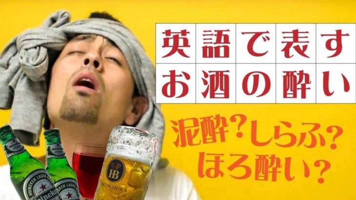 お酒の場で「酔い具合」を適切にあらわす英語【#99】