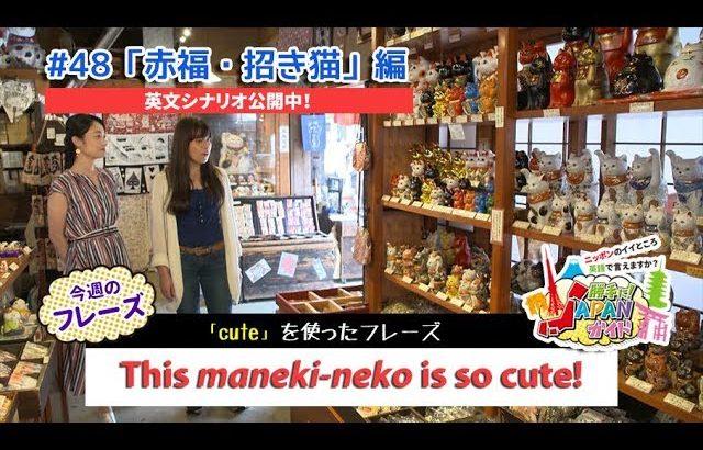 ECCが提供するBSフジ番組「勝手に!JAPANガイド」  #48 赤福・招き猫 編