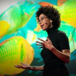 A love story for the coral reef crisis   Ayana Elizabeth Johnson