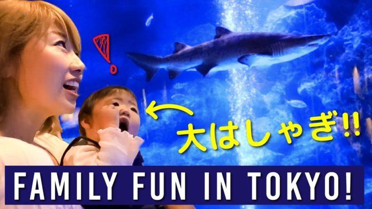 たまには東京観光!家族で大興奮☆ おしゃれで楽しい「すみだ水族館」!〔#840〕