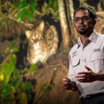 The link between fishing cats and mangrove forest conservation   Ashwin Naidu