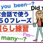 日常会話で使う英語50フレーズの口慣らし練習(003)Have you been…?、Did you …?、How many…?、I'm…