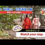 ECCが提供するBSフジ番組「勝手に!JAPANガイド」  #74 和歌山・世界遺産編