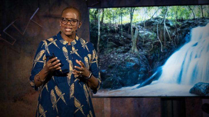 3 ways to uproot a culture of corruption   Wanjira Mathai
