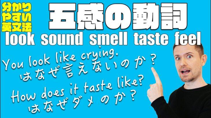 """英語の""""五感動詞""""look sound smell taste feelのすべて(わかりやすい英文法)"""
