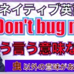 """【ネイティブ表現】""""Don't bug me"""" ってどういう意味なの?PNE55"""