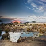 24 hours on Earth — in one image | Stephen Wilkes